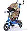 Детский трехколесный велосипед TILLY Trike T-351-2 Air лепестки ивы гол, кр,ор, желт, фото 3