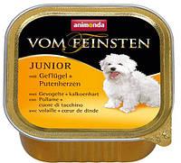 Консерва для щенков Animonda Vom Feinsten Junior с говядиной и птицей