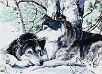 Рисование камнями на холсте Lasko Пара волков (TT011) 67 х 49 см
