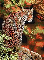 Рисование камнями на холсте Lasko Взгляд леопарда (TT014) 42 х 56 см