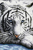 Рисование камнями на холсте Lasko Бенгальский тигр (TT021) 32,5 х 48 см