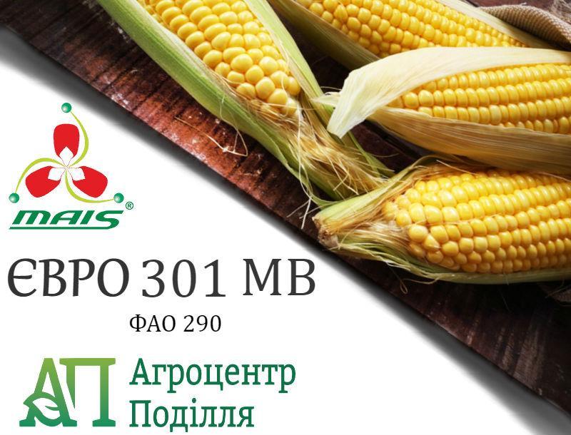 Семена кукурузы ЕВРО 301 МВ (ФАО 290) MAIS