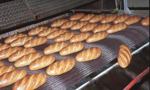 Транспортерна стрічка для хлібобулочних виробів