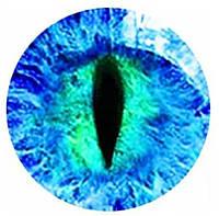 """Подвес """"Змеиный глаз голубой"""" на шнурке, фото 1"""