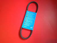 Ремень гидроусилителя  Chery Amulet Чери Амулет  A11-3412051 Италия