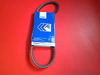 Ремень гидроусилителя  Chery Amulet Чери Амулет  A11-3412051 Германия