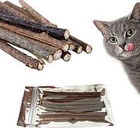 Кошачья мята (стебель).
