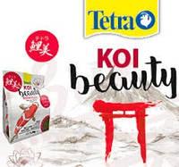 Tetra KOI Beauty Medium 4L