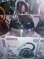 Чайник нержавейка со свистком на 3л