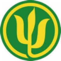 Семена кукурузы МАИС (г. Черкасі)