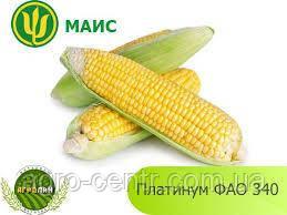 Семена кукурузы Платинум ФАО 340