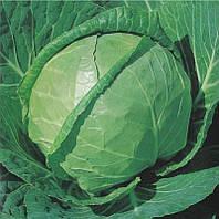 Семена капусты б/к Каменная голова (Satimex), 500 гр., банка