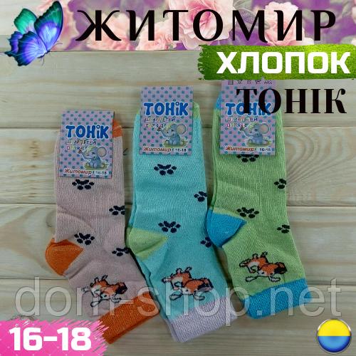 Носки детские демисезонные хлопковые Житомир ( девочка )16-18