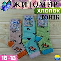 Носки детские демисезонные хлопковые Житомир ( девочка )16-18 подросток