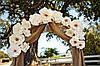 Арки и стенды с помпонов и цветов, фото 8