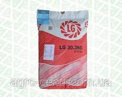 Семена кукурузы ЛГ 30360 Лимагрейн ФАО 340