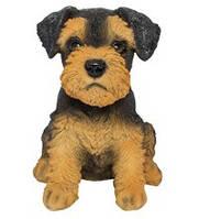 Статуэтка (копилка) щенок Эльдертерьера