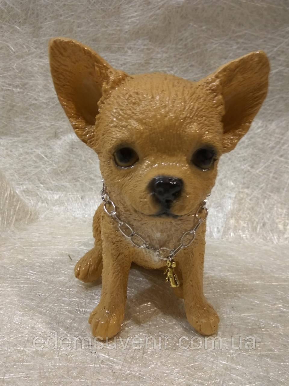 Статуэтка (копилка) щенок Чихуа цветной