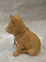 Статуэтка (копилка) щенок Чихуа цветной, фото 3