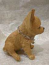 Статуэтка (копилка) щенок Чихуа цветной, фото 2