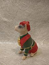 Статуэтка собака (собачка) бультерьер в шляпе, фото 2