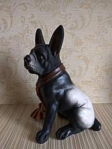Статуэтка (копилка) собака джентльмен, фото 3