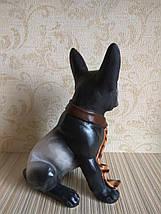 Статуэтка (копилка) собака джентльмен, фото 2