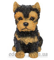 Статуэтка (копилка) собака щенок Йорка цветной