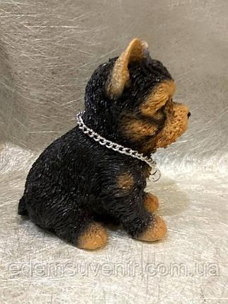 Статуэтка (копилка) собака щенок Йорка цветной, фото 2
