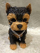 Статуэтка (копилка) собака щенок Йорка цветной, фото 3