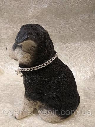 Статуэтка (копилка) собака щенок Хаски цветной, фото 2