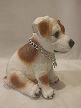 Статуэтка (копилка) собака щенок Джек рассел цветной, фото 3