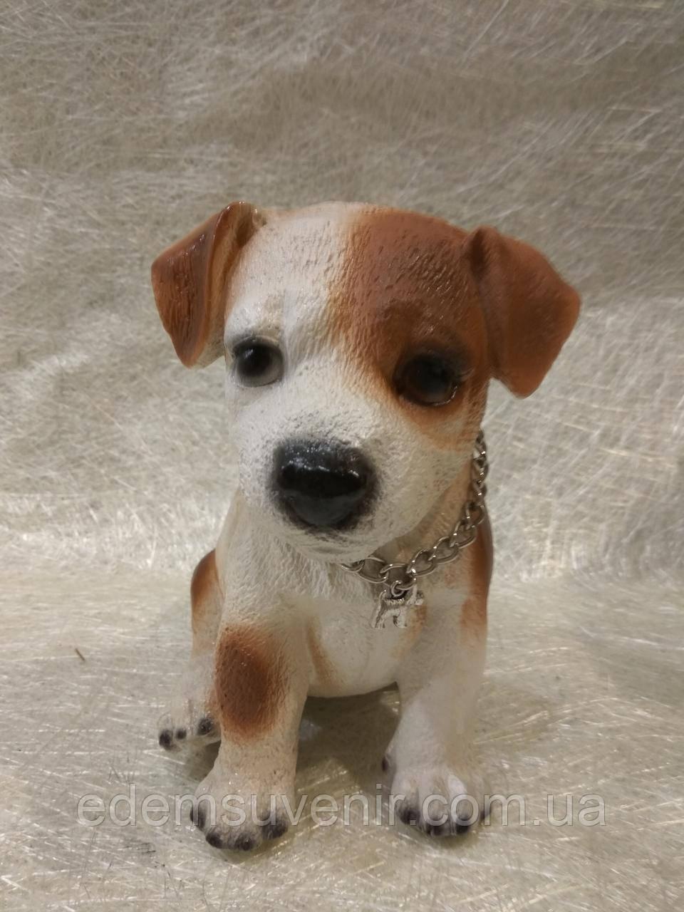 Статуэтка (копилка) собака щенок Джек рассел цветной