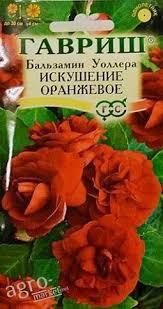 Бальзамин Уоллера Искушение Оранжевое F1, семена