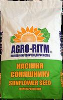 Семена подсолнечника Яниш-Н (Гранстар)