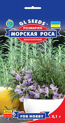 Розмарин, пакет 0,1г - Семена зелени и пряностей, фото 2