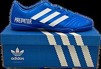 "Обувь для зала ""Бампы"" Adidas PREDATOR (р 40-45) Blue"