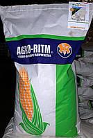Семена кукурузы Манифик ФАО 300