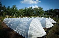 Агропарник Agreen 120 см ширина, 80 см высота, 3 м. Плотность 40 г/м2