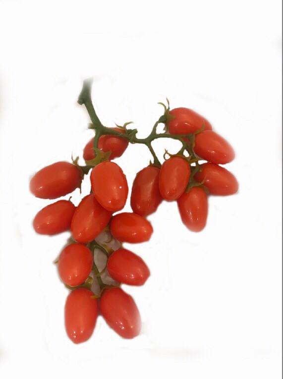 Муляж помидора.Веточка помидора Черри .