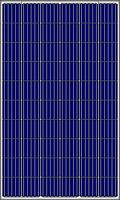 Солнечная батарея 335Вт 24Вольт AS-6P30-335 60 5ВВ Amerisolar поликристалл