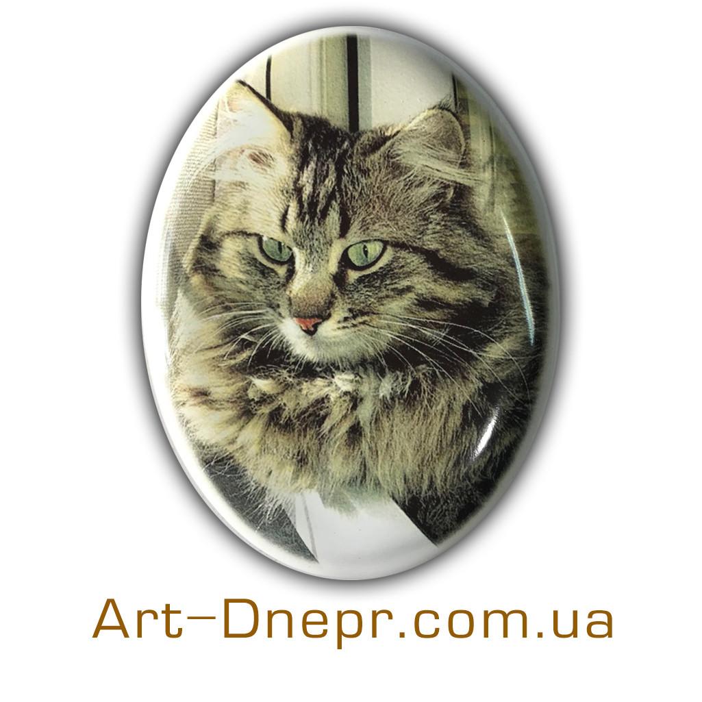 Табличка домашним животным. Керамика.