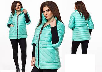 Куртка женская осень-весна Большого размера Мята