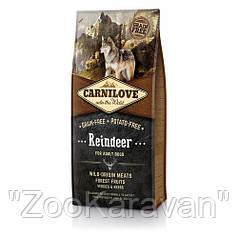 Сухой корм для взрослых собак Carnilove Raindeer с олениной 12 кг