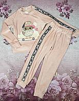 Стильный велюровый детский костюм для девочки с+3д аппликация Сова 110,116,122,128см пудра