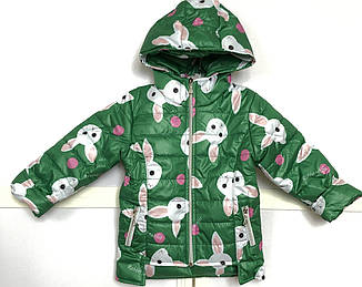 Детская куртка демисезонная для девочки Дашка, размеры 92-116, фото 2
