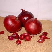 Семена лука Рэд Рум F1(10 000с) красный средне-ранний, фото 1