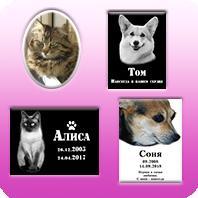 Таблички домашним животным