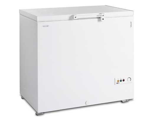 Морозильний лар TEFCOLD FR305-I