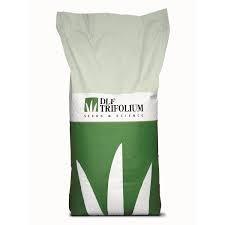 Семена Трава газонная  универсальная Lawn Robustica 1 кг, Трифолиум Голландия